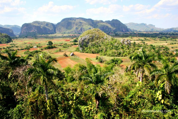 tobacco fields and mogotes (karst hills) in the Vinales Valley in Cuba