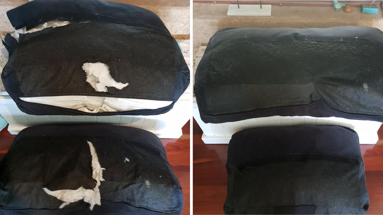 Fix a torn dog bed.