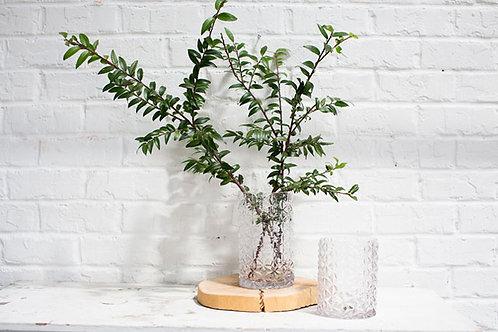 Loren Vase