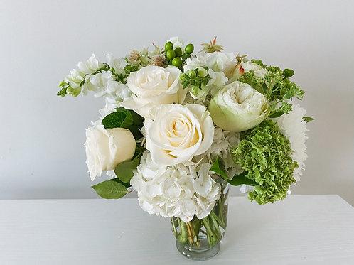 BBF - White Elegance