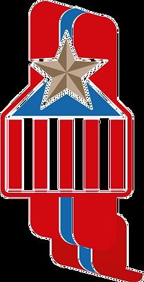 Bronze Star Homes Icon
