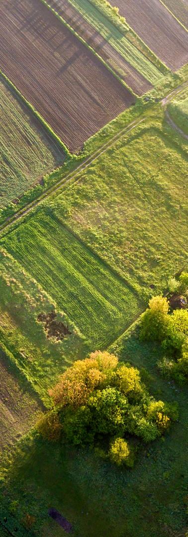 top-view-rural-landscape-sunny-spring-da