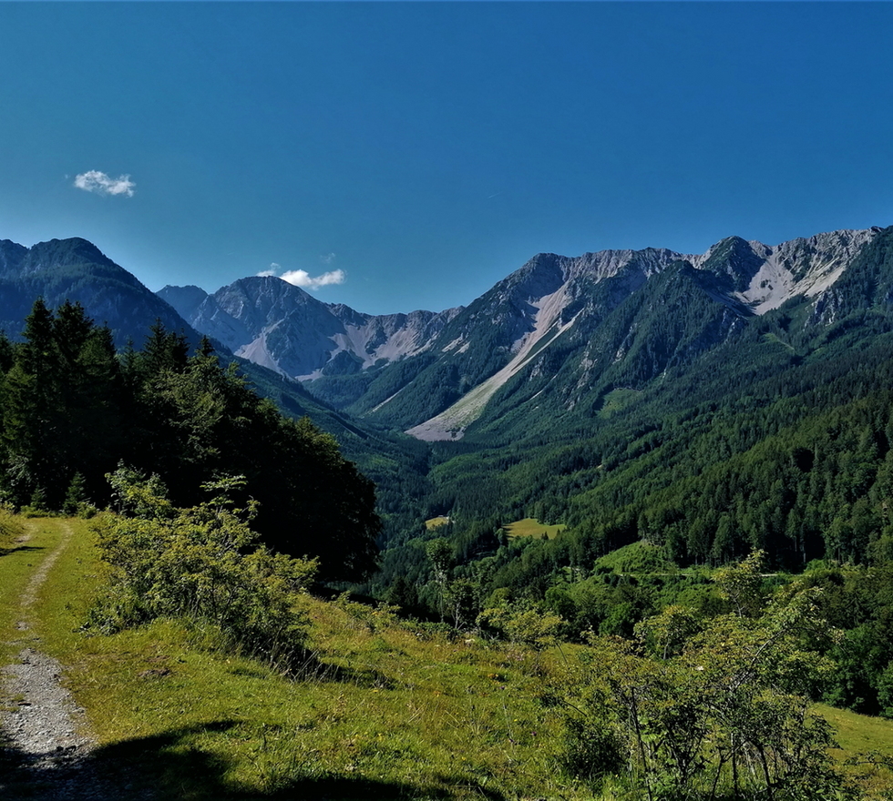 Kosiak – Hochstuhl - Weinasch