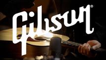Gibson G-45 Standard | Camera