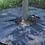 "Thumbnail: TreeDiaper 24"" Smart Watering Mat for 1.5"" Caliper Trees"