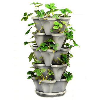 Mr Stacky vertical garden stackable garden