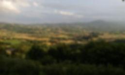 Landscape%20of%20Cannara_edited.jpg