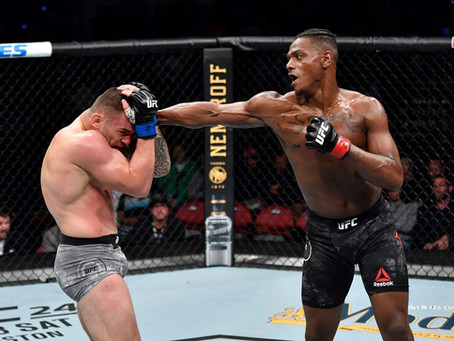 UFC Fight Night: HILL VS STOSIC