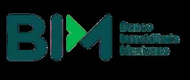 BIM-removebg-preview.png