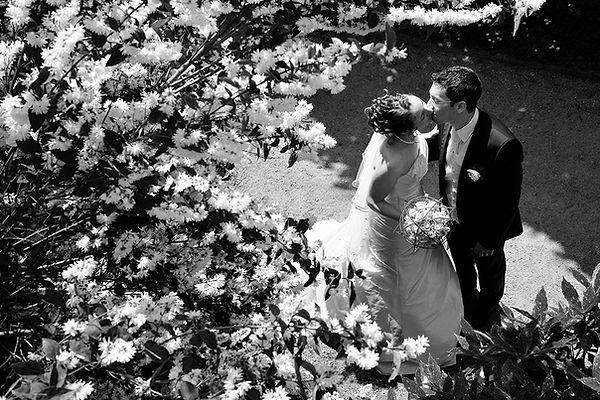 Sous l'arbre fleuri, photo demariage par Vincent Andreoli.
