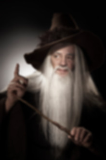 Merlin Fred.jpg