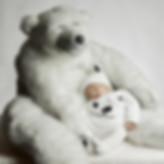 photo de bébé avec ours en studio