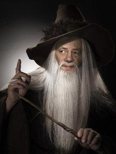 Portrait fine art Merlin