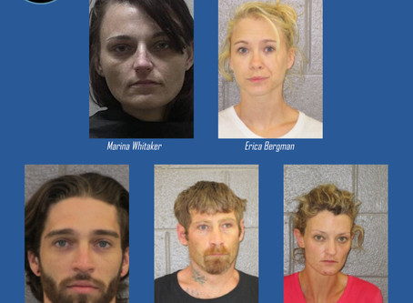 ARDEO partners with Banks, Habersham Sheriffs to remove $8K in meth, heroin off NE Georgia streets