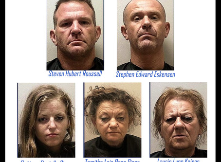 Gang of mostly middle-aged South Carolinians arrested for string of thefts from NE Georgia churches