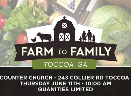 Farmers to Families free food box distribution at Encounter Church on June 11