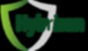 Hybrisan-Logo.png