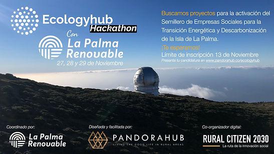 Ecologyhub 4.jpg