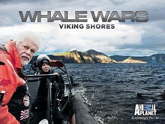 sea-shepherd-viking-shores+2.jpg