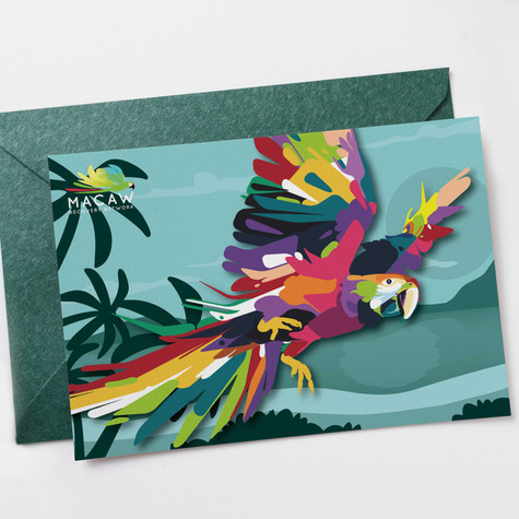 Macaw Recovery Group Direct Mailer
