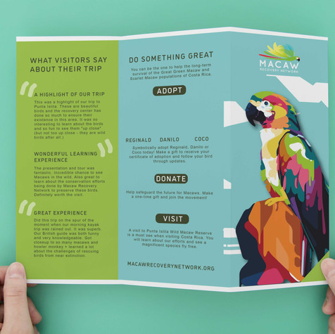 Macaw Recovery Group Brochure