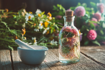 Clover tincture or infusion, mortar, dai