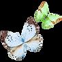 Acuarela de la mariposa 16