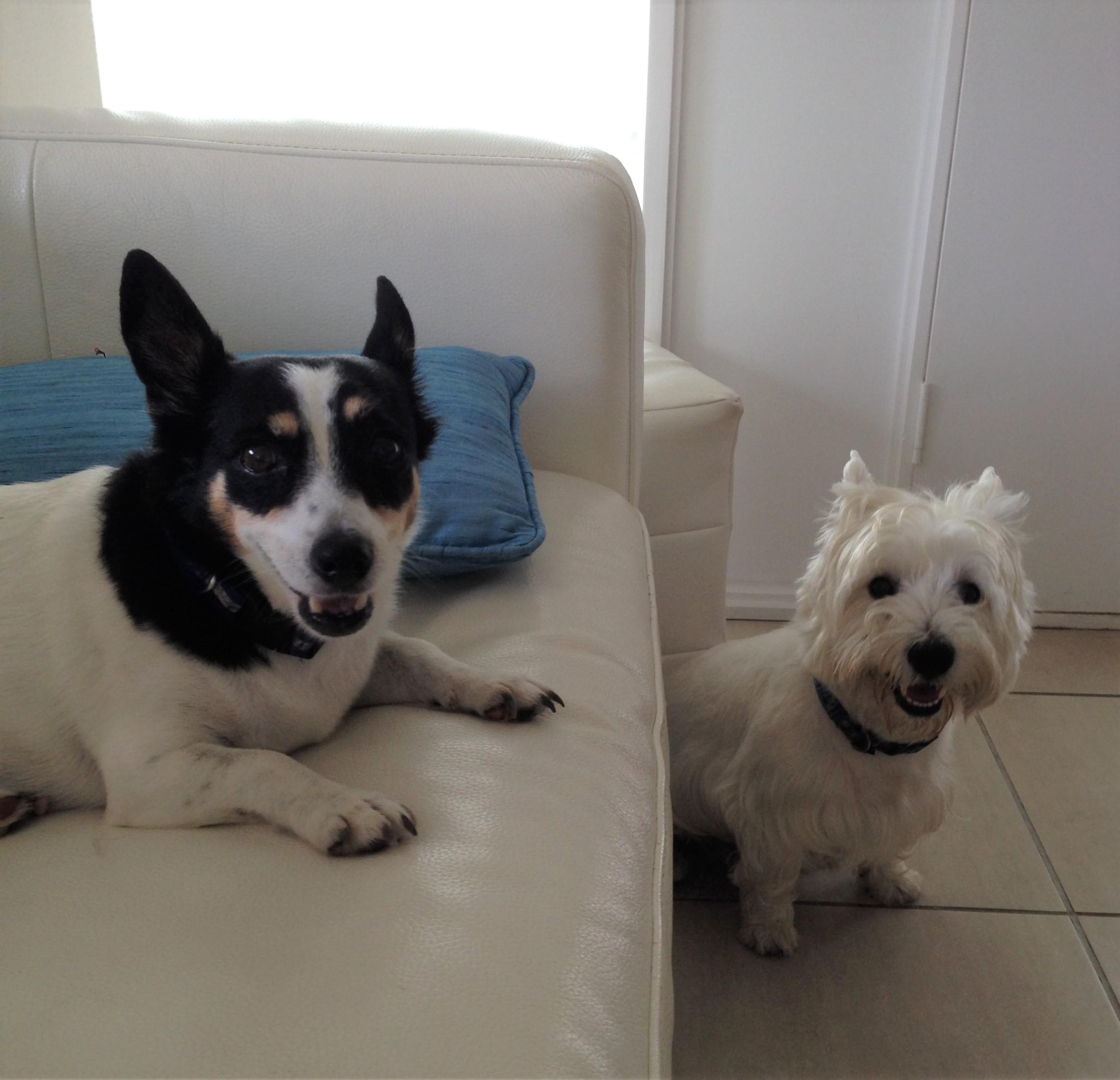 Geordie and Ruby