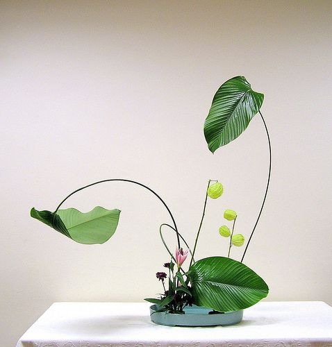 Ikebana and Ikigai: how to live a long, happy and meaningful life!