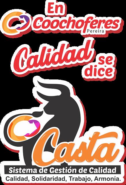 SCREEN CASTA.png