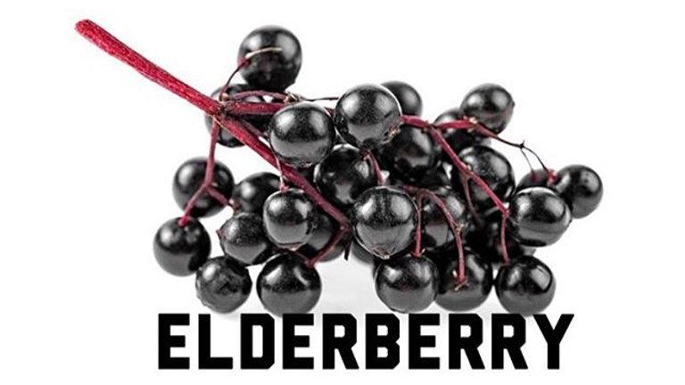 Unsweetened Elderberry Syrup