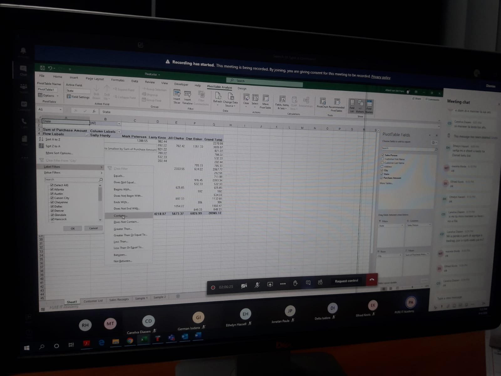 Virtual Pivot Table Training