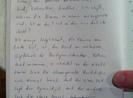Protokoll des Vortrags von Wolfgang Behrens