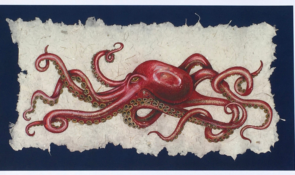 Octopus on Asparagus paper