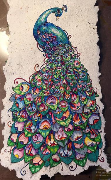 Peacock on Pumpkin paper