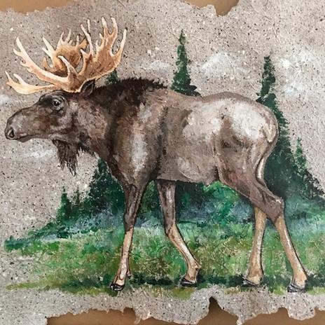 Moose on handmade banana paper