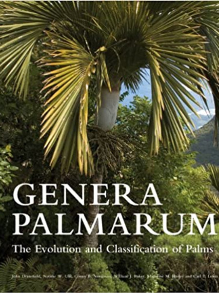 "Gently Used Excellent Condition Excellent Palm Tree Source ""Genera Palmarum"""
