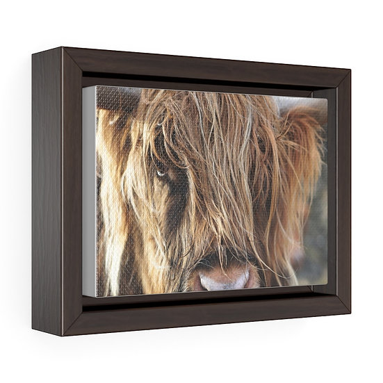 Highland Cow Canvas, Brown Long Hair Cow Canvas Print, Rustic Ranch Home Decor