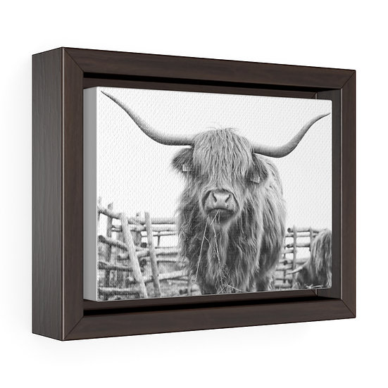 Canvas Print, Black and White Highland Cow Canvas, Western Ranch Canvas Print