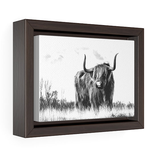 Highland Cow Canvas Print, Black and White Canvas Art, Rustic Ranch Home Decor