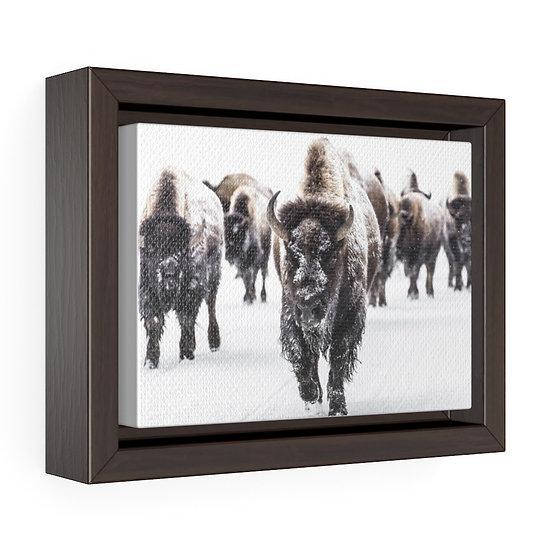 Canvas Print, Buffalo Herd Snow Storm Canvas, Western Ranch Canvas Print