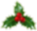 Christmas_Holly_Mistletoe_PNG_Clip-Art_I