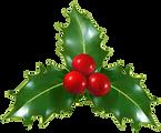 Christmas_Holly_Mistletoe_PNG_Clip-Art_I