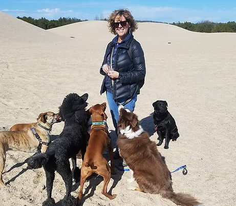 Amy Hagan and six dogs