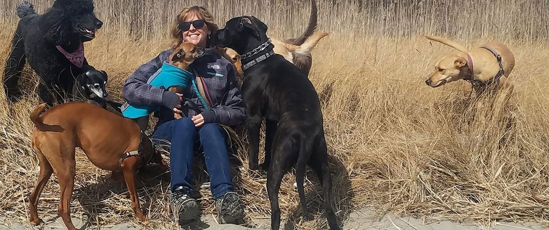 Amy-Hagan-Dog-Hikes-on-the-beach.jpg