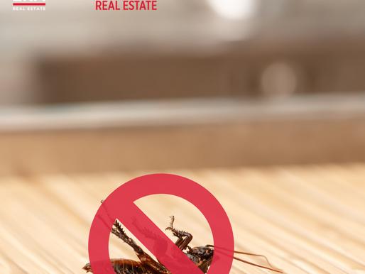 Preventing Pest Infestations