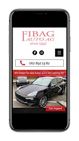 Referenz Fibag Auto AG