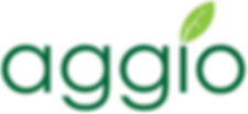 display_Aggio_20Vector_20Logo.png