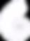 NautilusColourWhite.png
