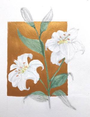 Lilies-Cyndy.jpg